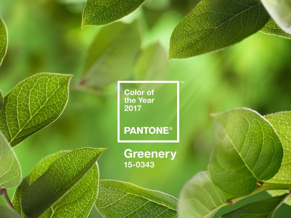 Pantone: Color of the Year