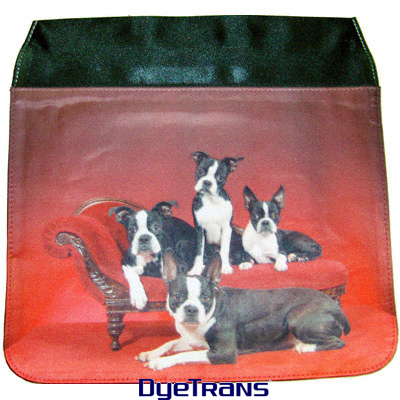 DyeTrans Large Purse Flap