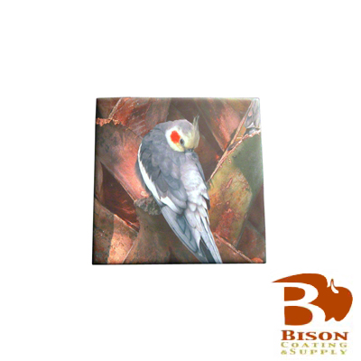 Bison Sublimation Blank Ceramic Tile - 4