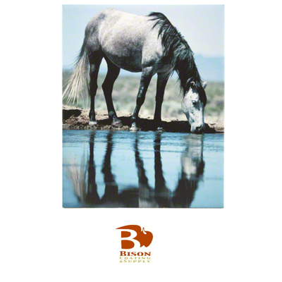 8x10 Bison® Tile - Matte White