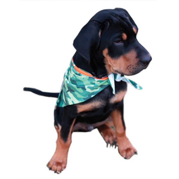 Vapor Sublimation Blank Dog Bandana - 31.5 x 9.5