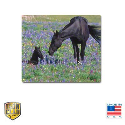 IronClad Sublimation Blank Ceramic Tile - 6 x 8 - Matte