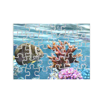 7.5x9.5 Magnet Puzzle- 30 Pieces - 5 Pack - Matte