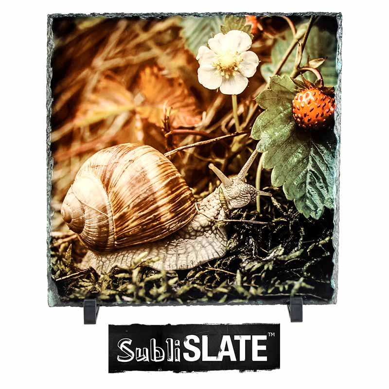 SubliSlate™ Blank Sublimation Slate Plaque - 11.8x11.8 - Square