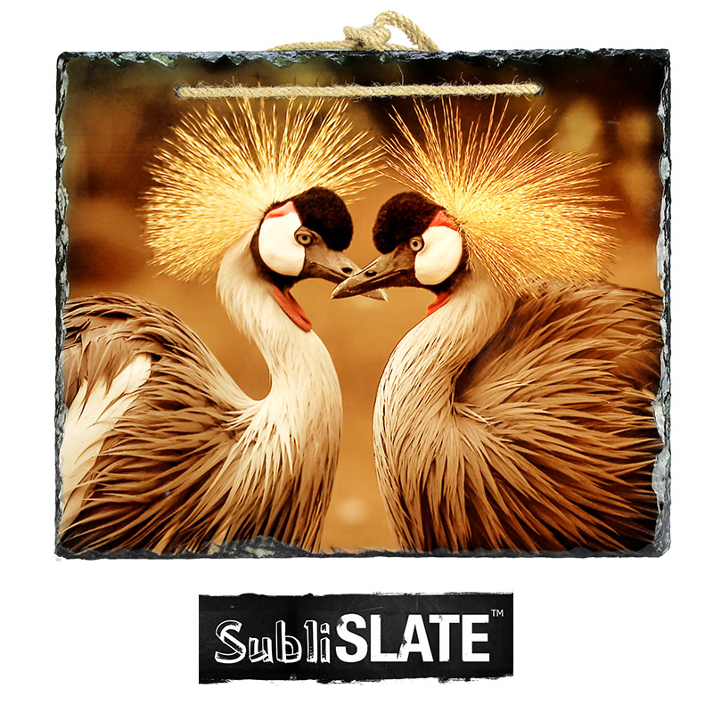 SubliSlate™ Blank Sublimation Hanging Slate Gloss Plaque - 11.8