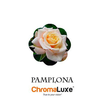 Pamplona ChromaLuxe Hardboard Photo Panel