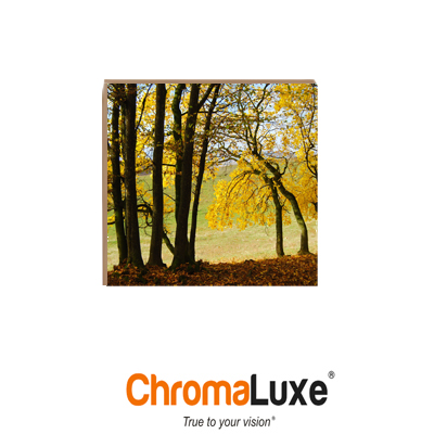 ChromaLuxe 8x8 Maple Natural Wood- Matte Clear
