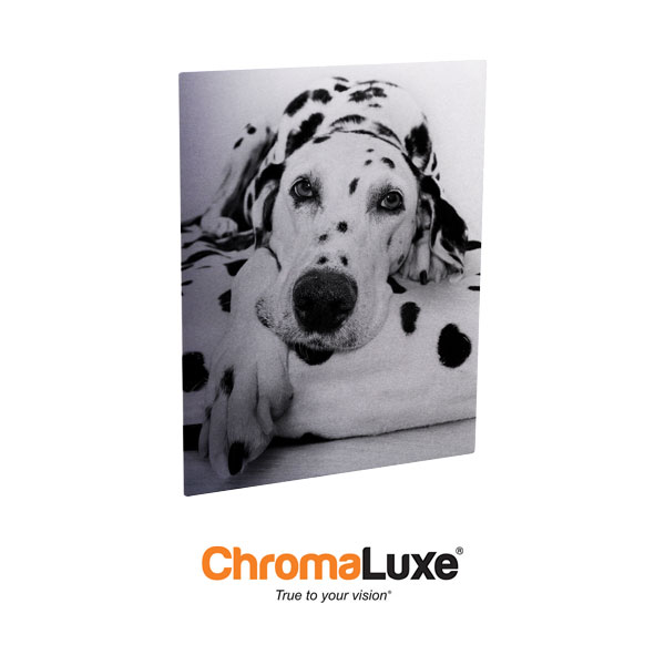 Chromaluxe Sublimation Blank EXT Life Aluminum Photo Panel - 12x18- Gloss Clear