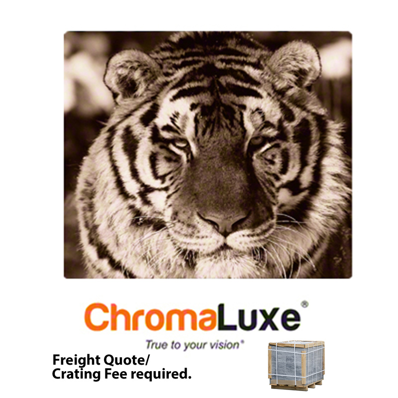 20x24 ChromaLuxe Aluminum Photo Panel Matte Clear