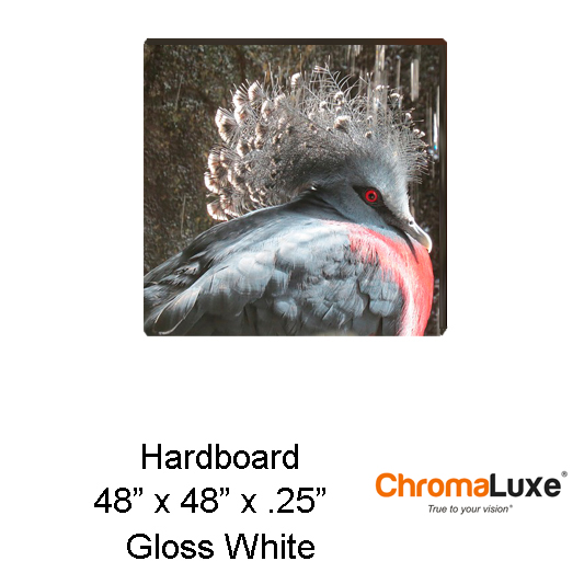 48x48 ChromaLuxe Hardboard Sheet Stock-White Gloss
